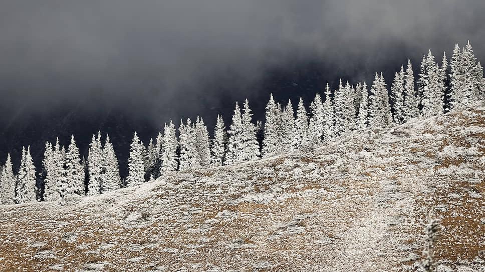 Алматы, Казахстан. Покрытые инеем деревья в горах