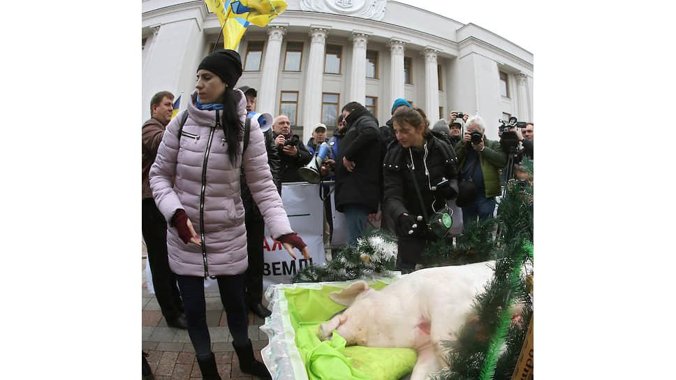 Акция протеста у здания Верховной Рады Украины против принимаемого проекта закона о продаже сельскохозяйственной земли