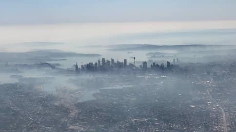 Сидней затянуло смогом