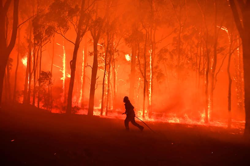 Сидней, Австралия. Тушение лесных пожаров