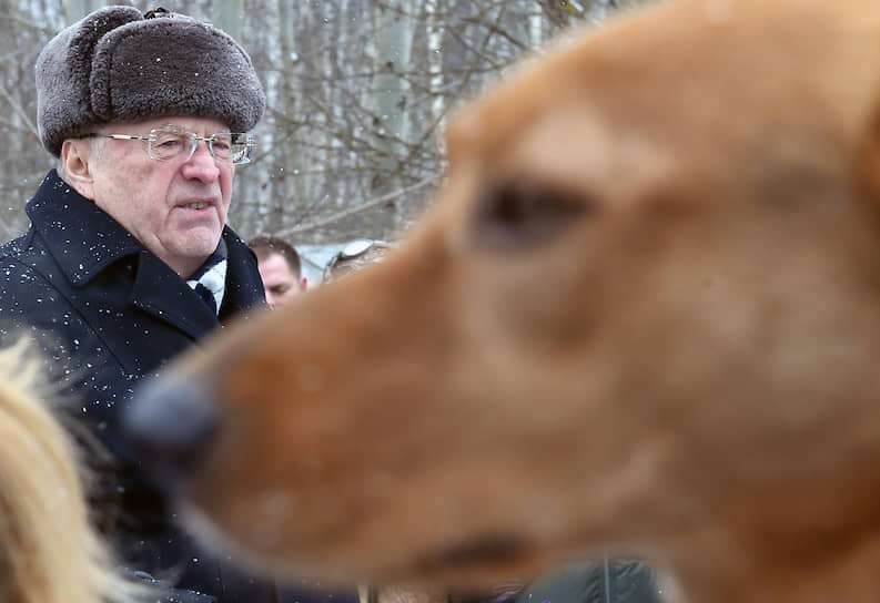 2018 год. Во время посещения приюта для бездомных собак «Красная сосна»