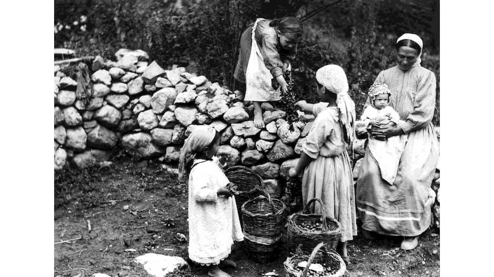 «Реальное осуществление плана водворения реэмигрантов в Крыму покоится на той материальной помощи, которая будет им оказана Советским Правительством»