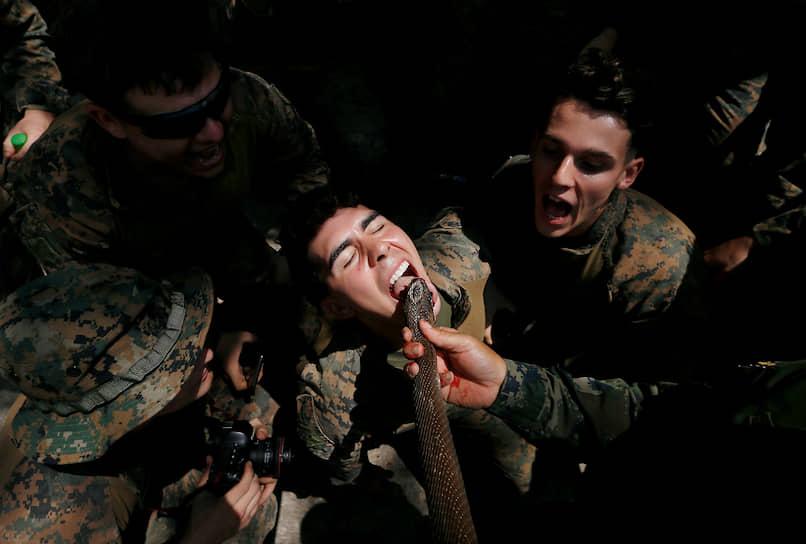 Чонбури, Таиланд. Солдат пьет змеиную кровь во время учений