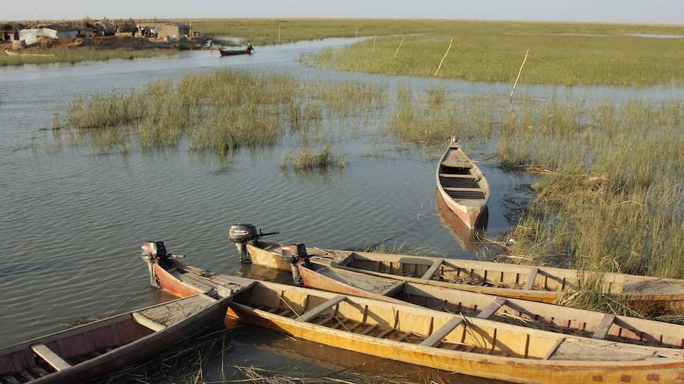 Саддам Хусейн пытался осушить болота, что в итоге привело к экологической и социальной катастрофе