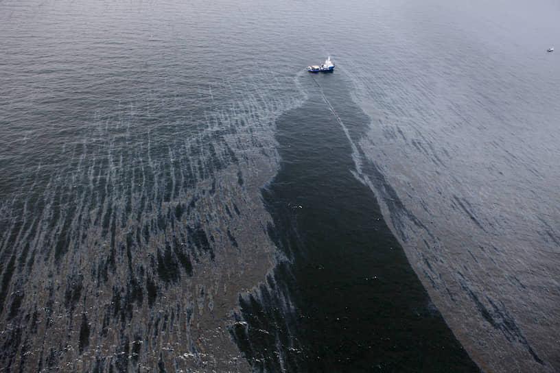 Экономические последствия катастрофы для США оценивались в $145,9 млрд, больше всего пострадали туристическая и рыболовная отрасли. Только BP на выплату компенсаций и устранения последствий разлива потратила $61,6 млрд