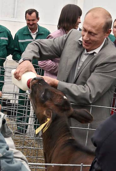 13 сентября 2007 года. На ферме в селе Зоринские дворы в Белгородской области