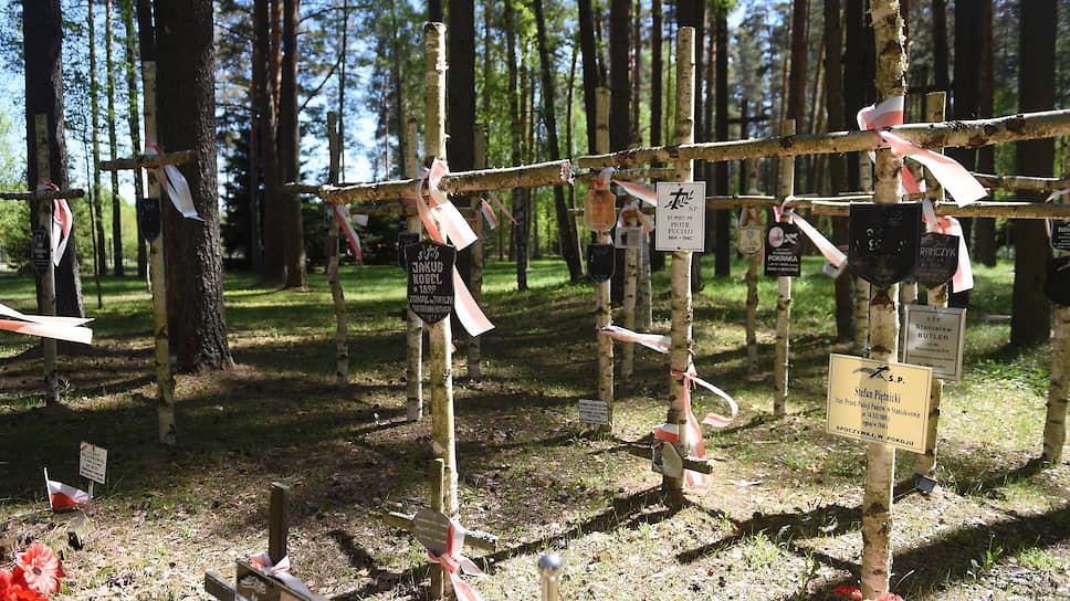 Кресты на польском военном кладбище в «Медном»