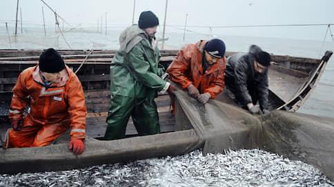 Рыбакам пересчитали нагрузку  / Требования обходятся отрасли почти в 60млрд руб. в год