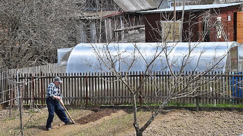 Покупателей потянуло к земле  / Спрос на садовый инвентарь вырос на фоне пандемии