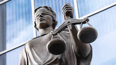 Юриста ввели в дело следователей  / Фигуранта расследования о взятках сотрудникам подмосковного управления СКР подготовили к суду