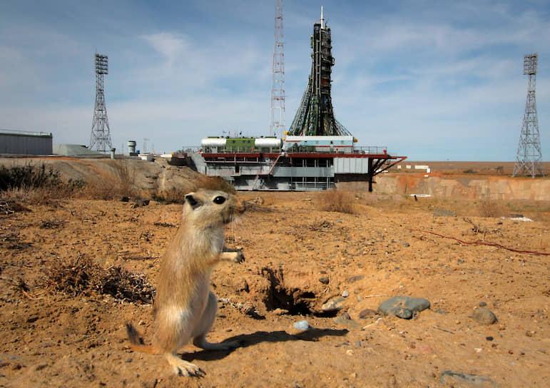Байконур является площадкой для международного сотрудничества. Совместно с Казахстаном на космодроме создается новый ракетно-космический комплекс «Байтерек»