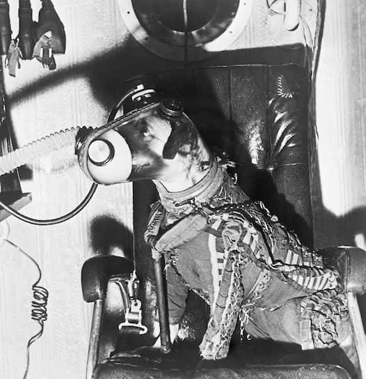 Осенью 1959 года межпланетная станция «Луна-2» впервые доставила аппарат на спутник Земли. 19 августа 1960 года с полигона был запущен «Спутник-5» с собаками Белкой и Стрелкой на борту