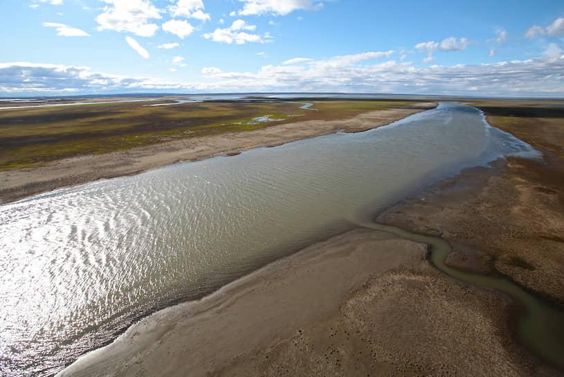 Организованы несколько линий боновых заграждений, в том числе в районе истока реки Пясино
