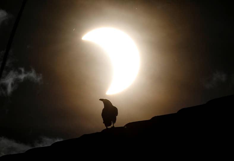 Перед началом кольцеобразной фазы и после ее окончания у края Луны, противоположного незакрытой части Солнца, можно заметить солнечную корону, особенно в горах
