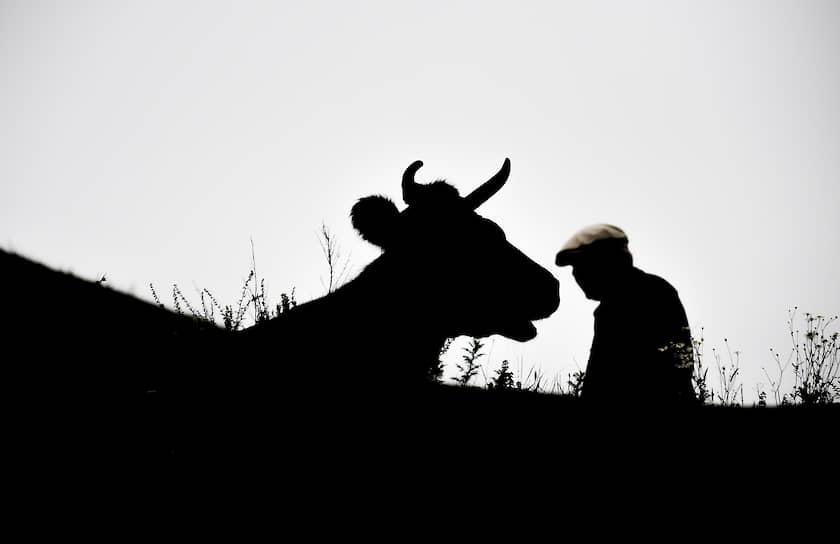 23 августа. Дагестан, Россия. Житель заброшенного села Амузги