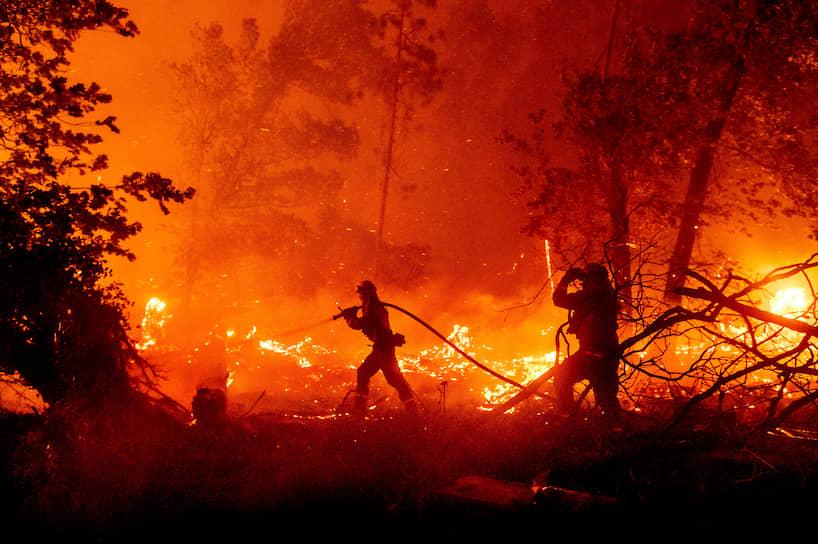 Мадера, штат Калифорния, США. Тушение лесного пожара