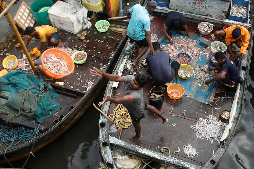 Мумбаи,Индия. Рыбак перекидывает на рынок корзину с рыбой