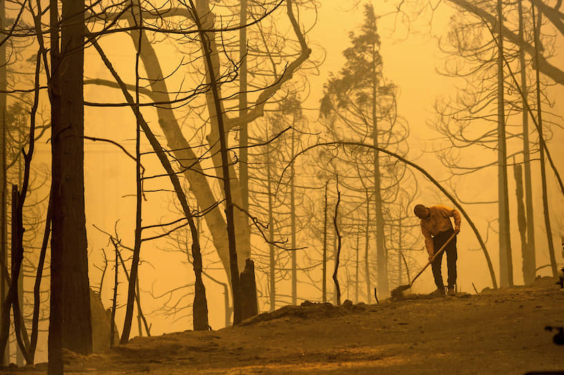 Пожарный борется с распространением огня в лесу