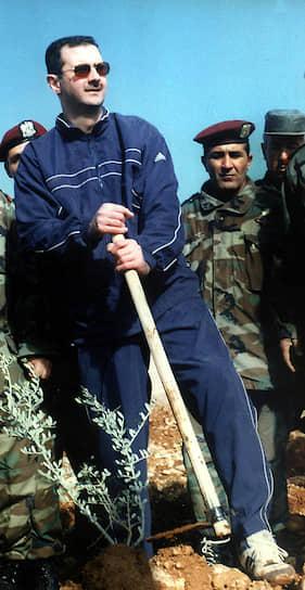 В 1994 году после гибели в автокатастрофе старшего брата Басиля, которого отец готовил в качестве своего преемника, Башар Асад был назначен советником президента. От кандидатур других президентских сыновей в качестве преемников пришлось отказаться: третий сын Махер отличался необузданным нравом и однажды ранил из пистолета главу сирийской военной разведки, а самый младший Маджид оказался замешан в серии скандалов с наркотиками