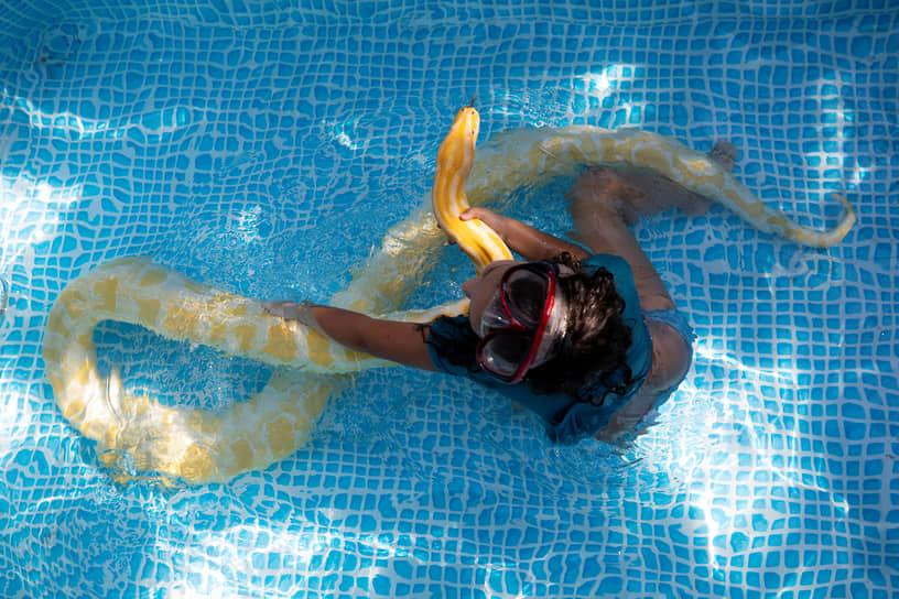 Геа, Израиль. Девочка с домашним питоном плавает в бассейне на заднем дворе дома