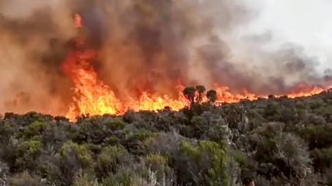 """«Такого пожара не было с тех пор, как правительство запретило курить на горе»  / Российский бизнесмен рассказал """"Ъ"""" о том, как борются с огнем на склонах Килиманджаро"""