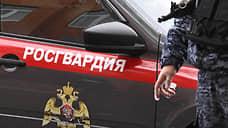 Чеченские росгвардейцы попали в засаду