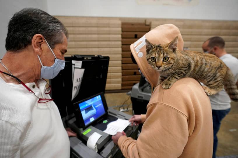 Луисвилл, Кентукки. Мужчина с кошкой на плече голосует в здании школы