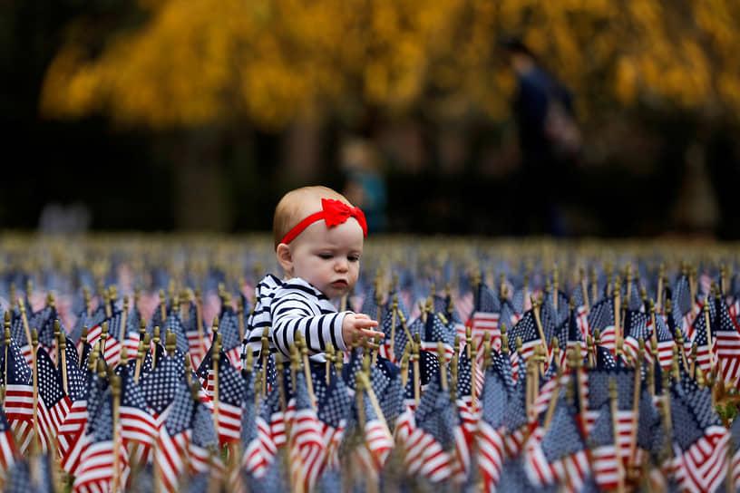 Нью-Йорк, США. Ребенок на поле, украшенном национальными флажками ко Дню ветеранов