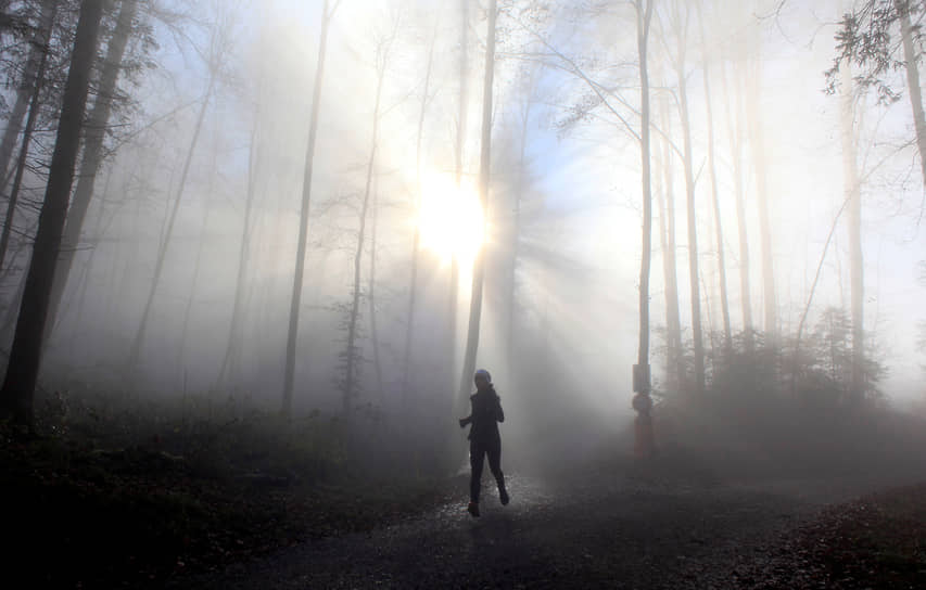 Цюрих, Швейцария. Женщина на пробежке в туманном лесу