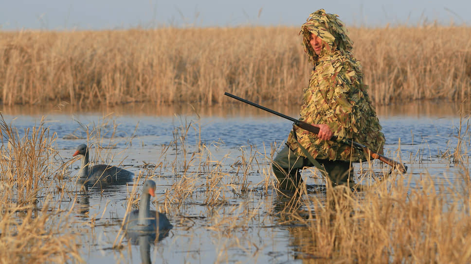 Экологи опасаются, что новые поправки легализуют охоту на редких млекопитающих и птиц