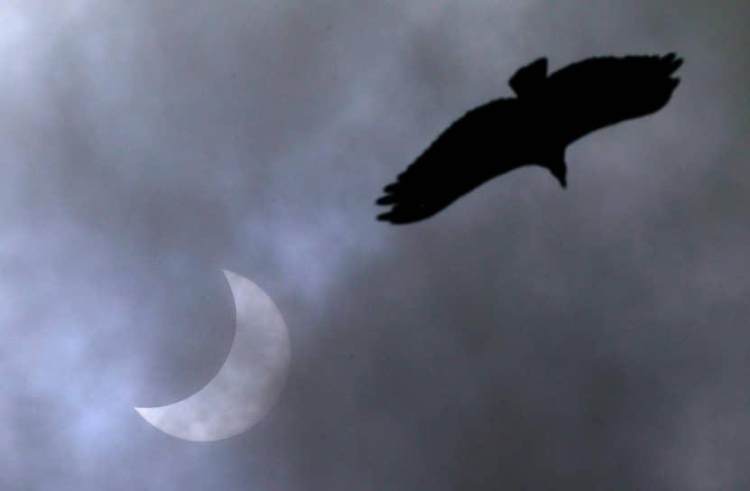 Вечером 14 декабря жители южного полушария Земли смогли увидеть полное солнечное затмение
