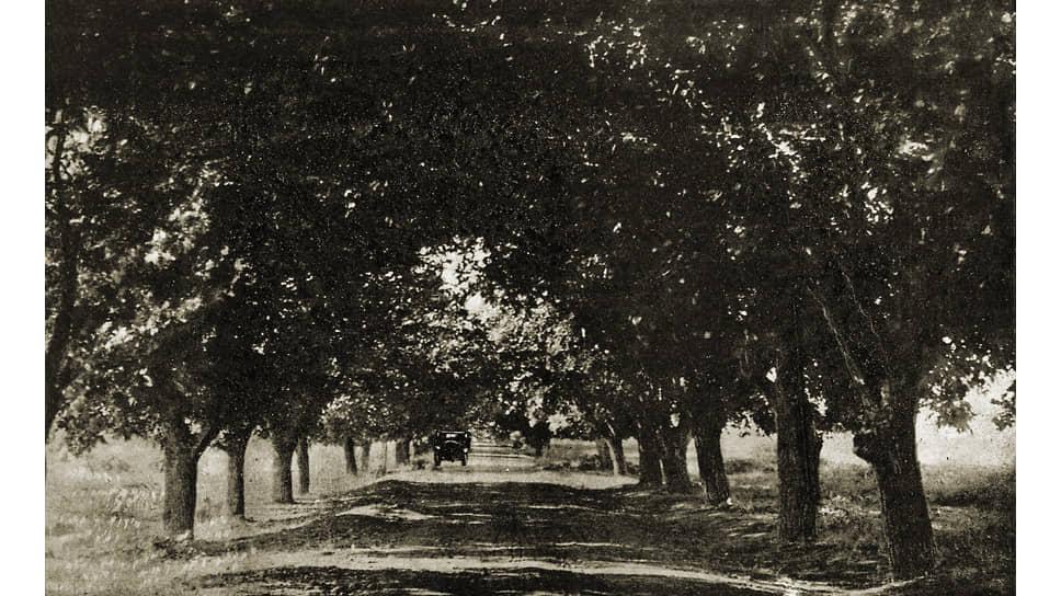 «В безобразном состоянии,— говорилось во втором докладе Гамхарашвили Сталину,— находится исключительная ореховая аллея (грецкого ореха) протяжением 120 километров. Все деревья заражены, они без ухода»