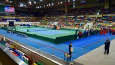 Кубку Дэвиса добавят городов  / Теннисный турнир снова меняет формат
