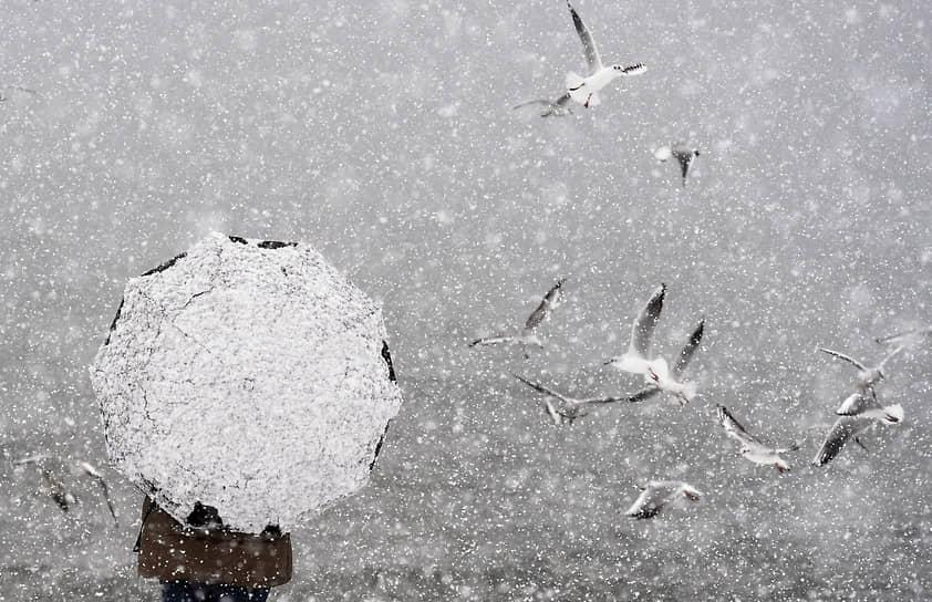 16 января. Республика Крым. Аномальный снегопад