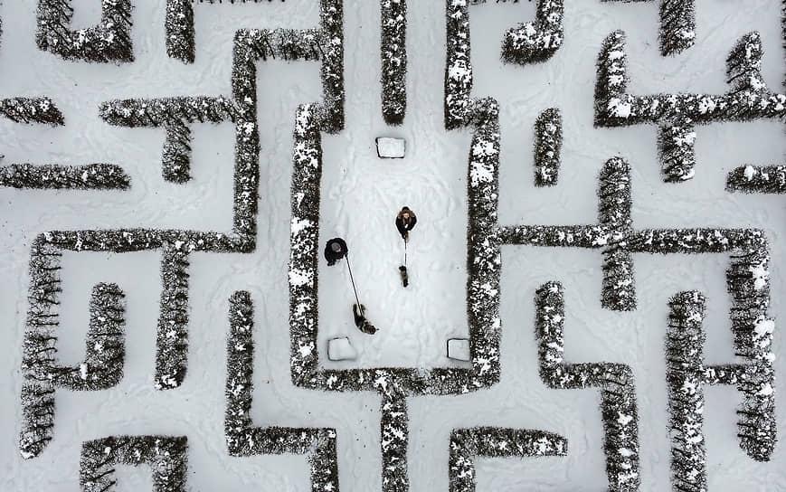 Гельзенкирхен, Германия. Люди гуляют с собаками в парке