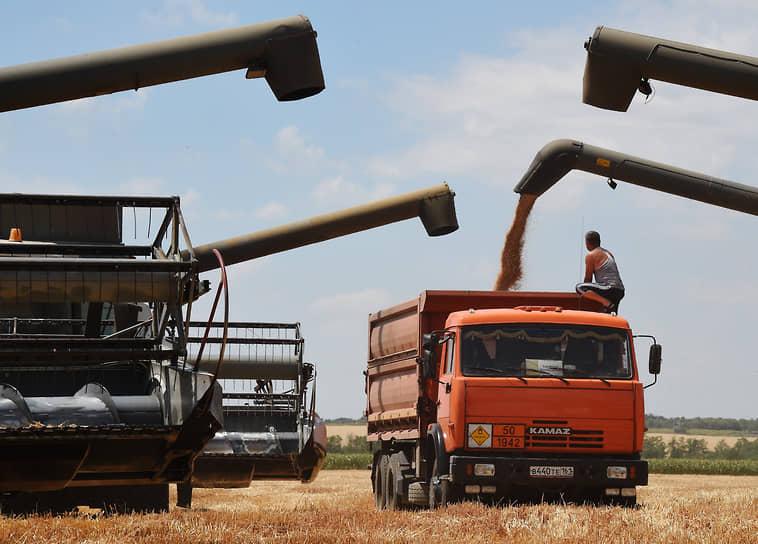 Грузовики «КамАЗ» задействованы на уборке зерновых