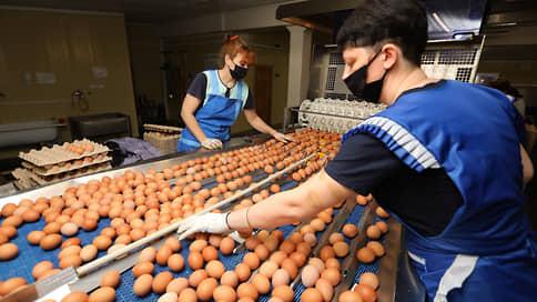 Птицеводы зажимают цены // Производители мяса и яиц готовы не повышать стоимость продуктов