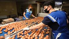 Птицеводы зажимают цены  / Производители мяса и яиц готовы не повышать стоимость продуктов