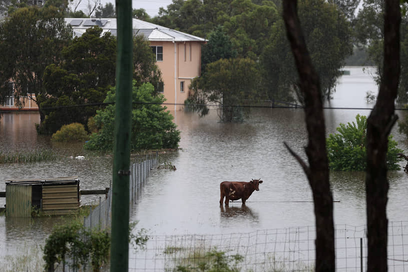 Виндзор, Австралия. Последствия наводнения в штате Новый Южный Уэльс
