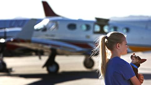 Как британцы работают на удаленке и почему американцы любят летать с животными  / Любопытные сообщения и исследования 22–26марта