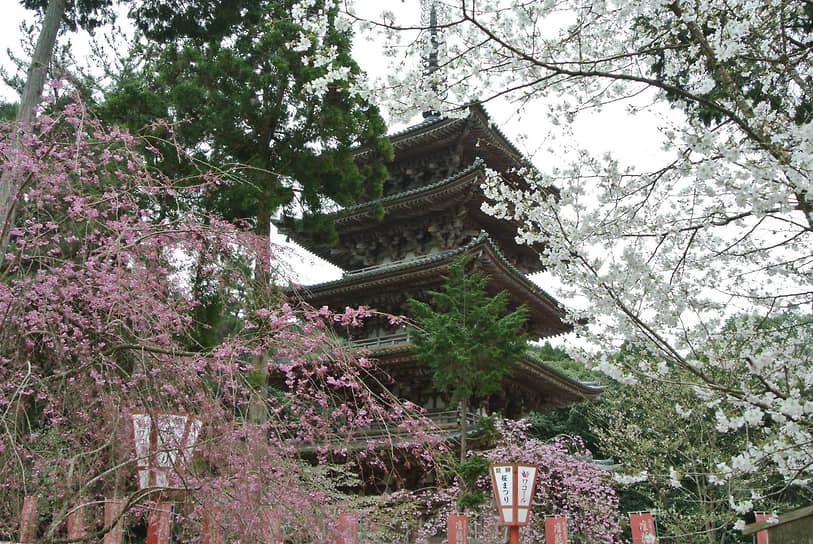 Храм Дайго-дзи в Киото стремится в небо