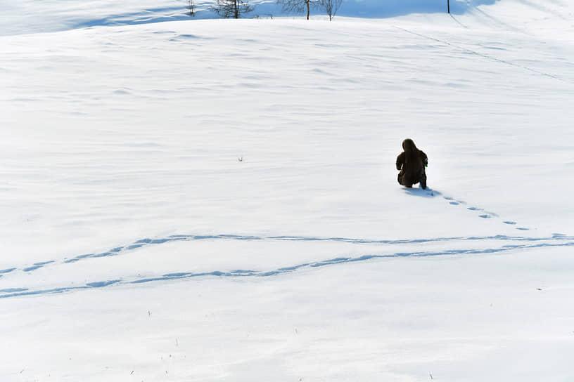 Из коренных малочисленных народов российского Севера ненцы являются самым многочисленным. В России их около 45 тыс. человек