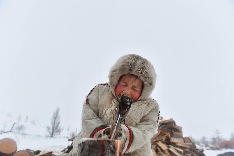 Дети помогают родителям с заготовлением дров