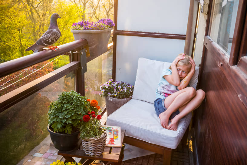 Еще одной лучшей фотоисторией в категории «Природа» стала серия Джаспера Доста о дружбе пары диких голубей с семьей фотографов