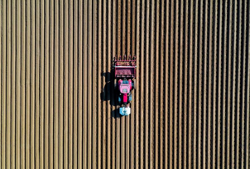 Тиллуа-лес-Камбре, Франция. Фермер едет на тракторе по своему полю