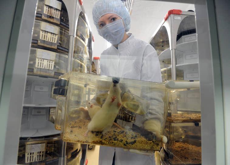 Великобритания стала первой страной в мире с законодательством, защищающим животных. В 1822 году страна приняла закон о предотвращении жестокого и ненадлежащего обращения со скотом. В 1976 году был принят закон об опытах на животных. А в 1998 году страна и вовсе запретила тестирование косметики на животных и ввела закон об обязательном обезболивании при эксперименте