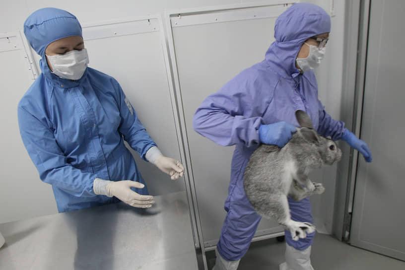 Значок прыгающего кролика (TheLeapingBunny) был введен британской организацией Cruelty Free International и подтверждает этичность продукции компании. В настоящий момент свыше 600 компаний в мире удостоились признания этичности в отношении животных