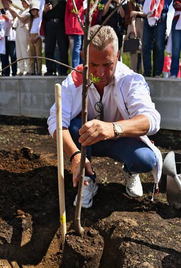 Адвокат Павел Астахов во время посадки деревьев на территории фабрики «Мануфактуры Bosco»