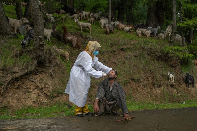 Сринагар, Индия. Кашмирский врач в защитном костюме делает ПЦР-тест кочевнику, чтобы проверить его на COVID-19