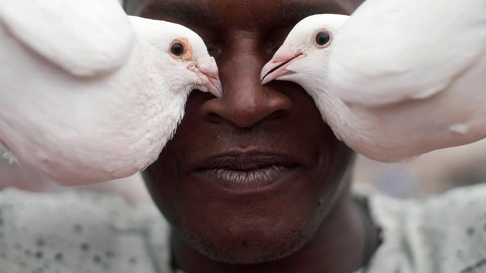 Гавана, Куба. Мужчина позирует с голубями